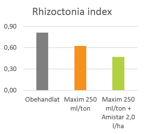 Rhizoctonia index